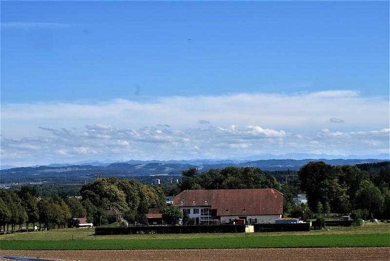 Feldbrunnen 11.08 (4)