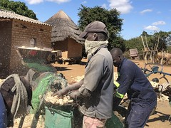 Agricultural mechanization offers rural opportunities for young entrepreneurs in rural Zimbabwe
