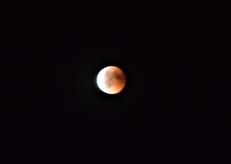 Moon Eclipse 27.07 (30)