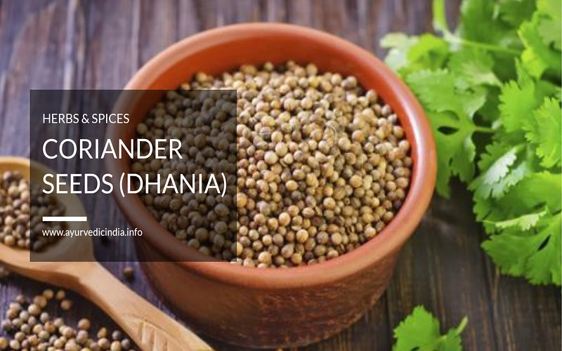 10 Amazing Health Benefits Of Coriander Seeds (Dhania)