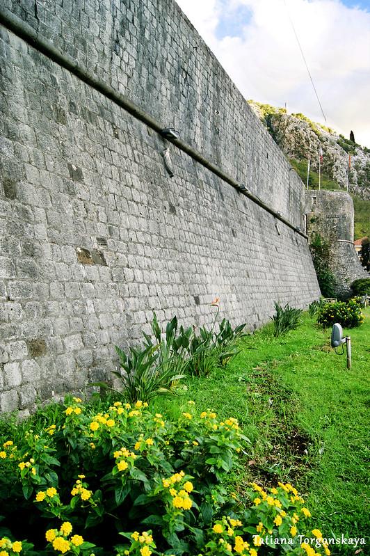 Городская стена Котора