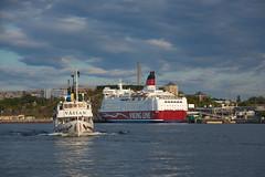 Jours d'été à Stockholm : lumière du soir sur le port