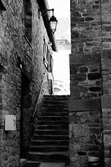 A mon approche, le chat solitaire s'était en silence glissé par la porte entrebâillée, laissant libre la montée - Photo of Mecé