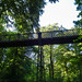 Dingle Bank footbridge, 2018 Jul 08 -- photo 1