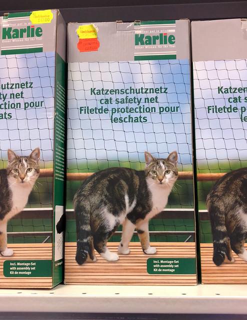 catnettingIMG_0425