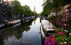 Morning on the Prinsengracht