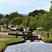 Tardebigge Locks 4