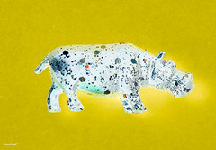 Aerial view of hippopotamus with effects