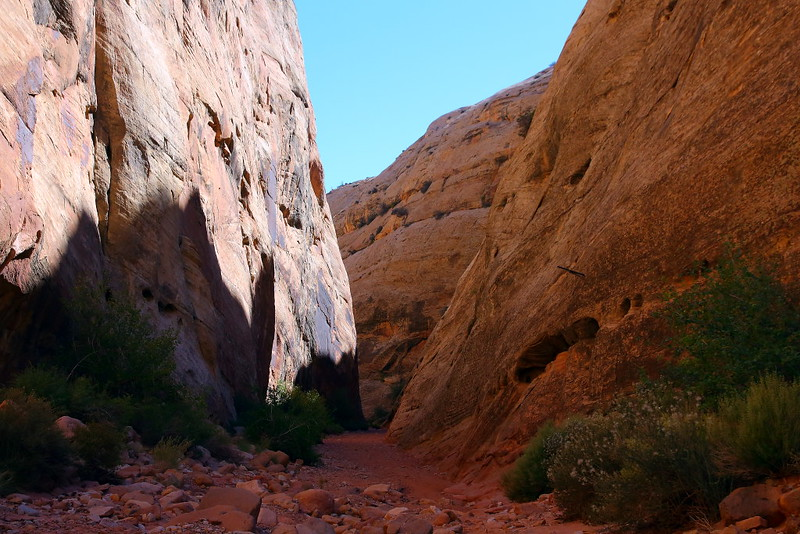 IMG_7697 Capitol Gorge Trail, Capitol Reef National Park