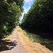 Grand Union Canal @Tring