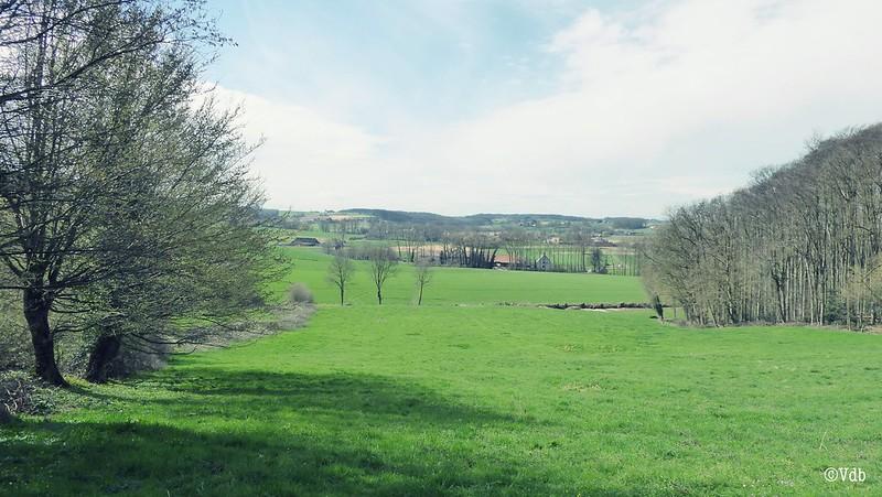 wandelwalhalla Vlaamse Ardennen