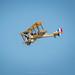 Royal Aircraft Factory BE2C by amipal