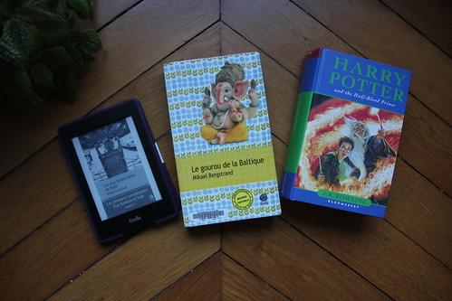 Les aventures tumultueuses d'un Suédois en Inde de Mikael Bergstrand // Les aventures tumultueuses d'un Suédois en Inde #1) de Mikael Bergstrandby J.K. Rowling