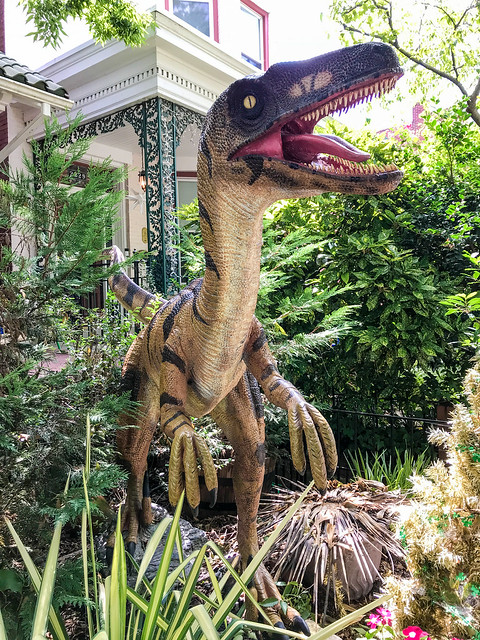 Alan The Raptor