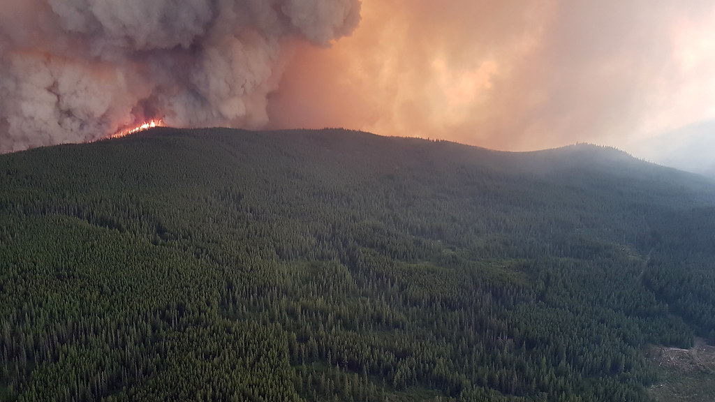 The British Columbia government has declared a provincial state of emergency to support the provincewide response to the ongoing wildfire situation.