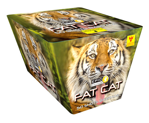 FAT CAT 50 SHOT FAN CAKE #EpicFireworks