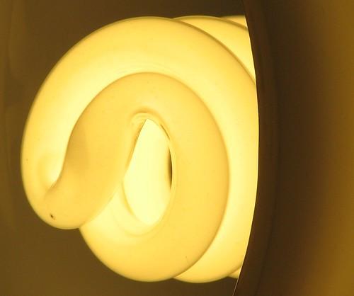 Compact Fluorescent Detail
