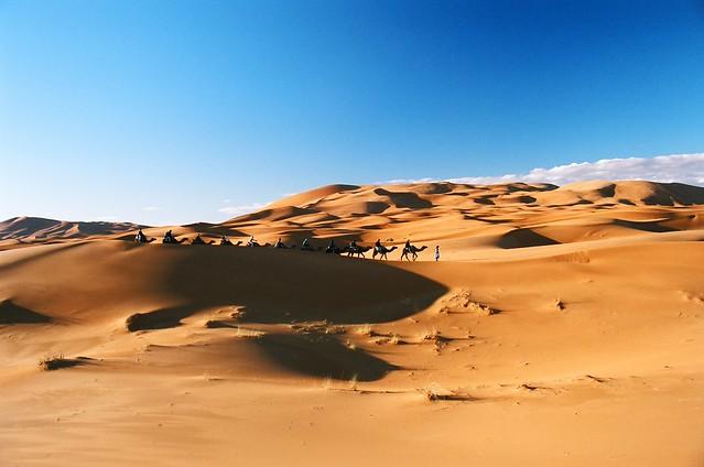 Caravan - Dunes of Merzouga - Morocco