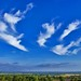 Dream Clouds by algo