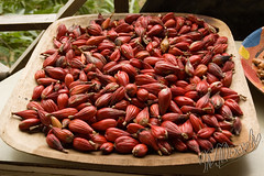nuts & seeds, plant, produce, fruit, food, nut,