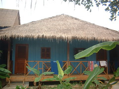 resort(0.0), tent(0.0), thatching(1.0), village(1.0), hut(1.0), roof(1.0), property(1.0), cottage(1.0), house(1.0), home(1.0),