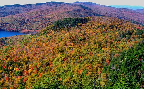 autumn mountain tree fall peru 35mm maine hike scan foliage creativecommons woodstock baldmt