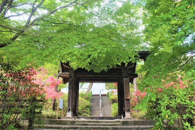 souzenji-gosyuin04006