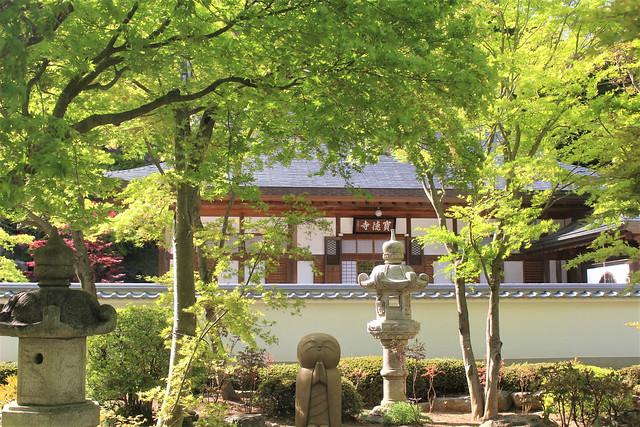 houtokuji-gosyuin04016