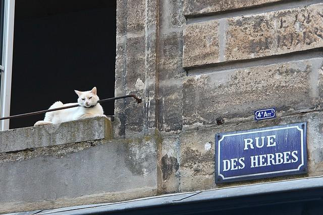Rue des Herbes