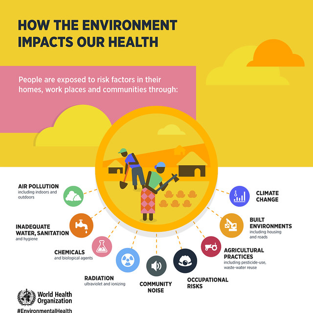 資訊圖像案例_WHO_HOW THE ENVIRONMENT IMPACTS OUR HEALTH