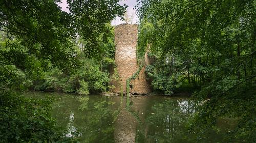 Wasserburg Ruine Mechelgrün - Water castle ruin Mechelgrün