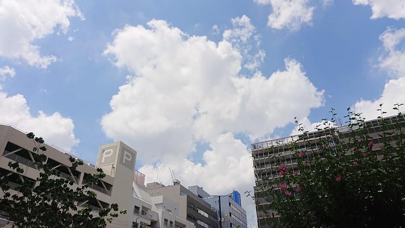 2018-07-20_11-03-01