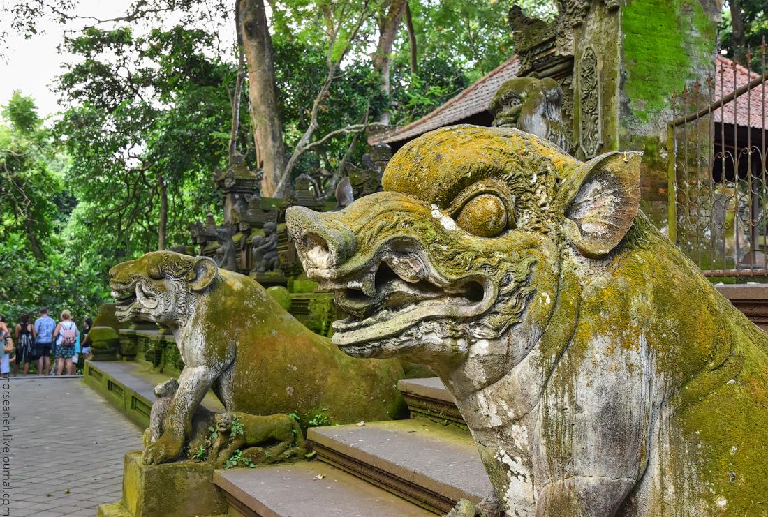 Bali-Ubud-(83)