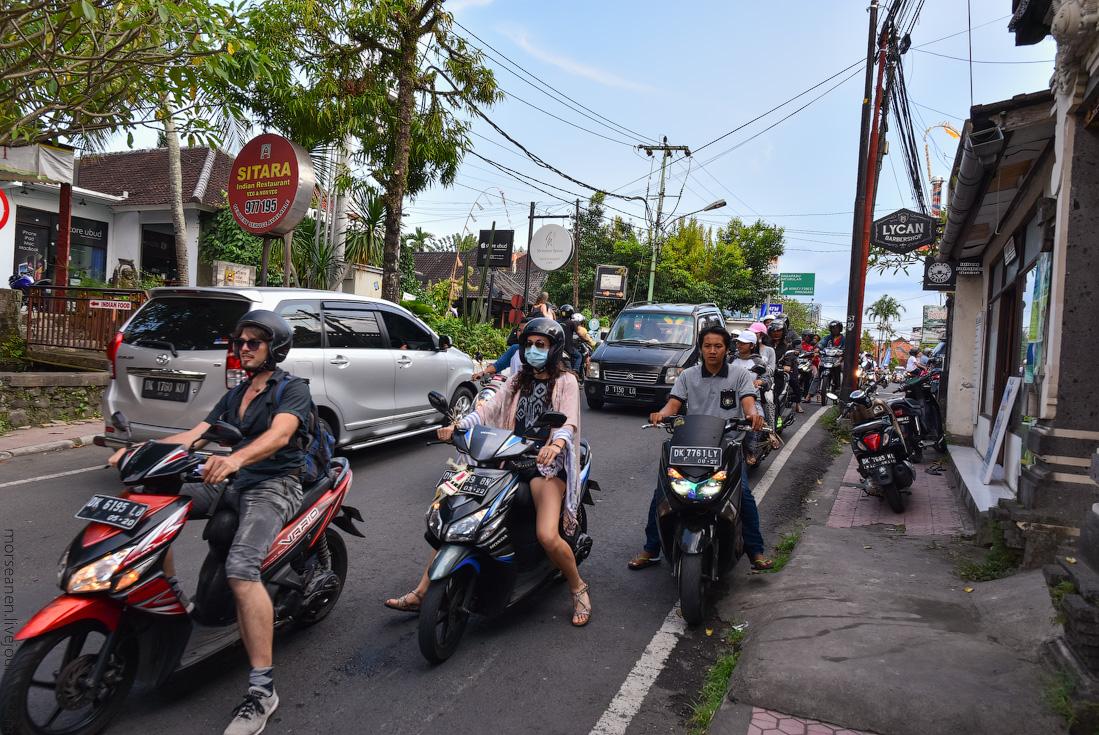 Bali-Ubud-(73)