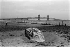 Dead Horse Bay, Brooklyn