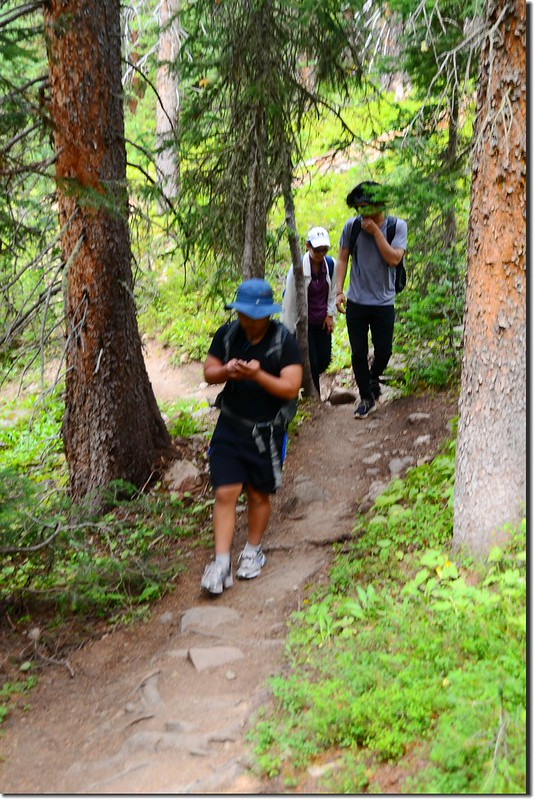 Columbine Lake Trail (1)