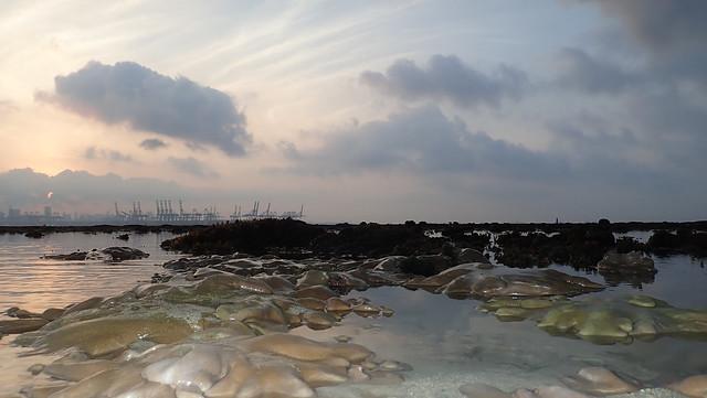 Living reefs of Cyrene
