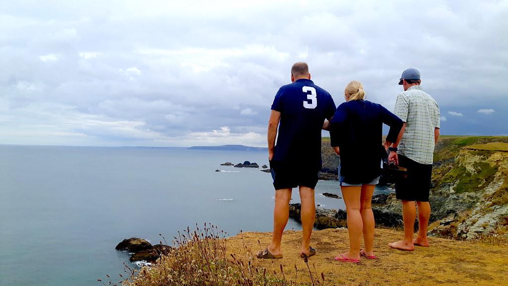 seal watching Godrevy, Cornwall