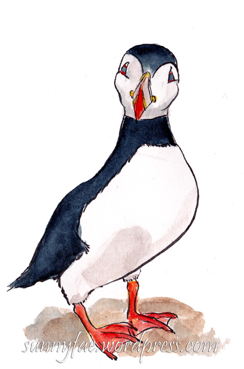 sketch of a puffin