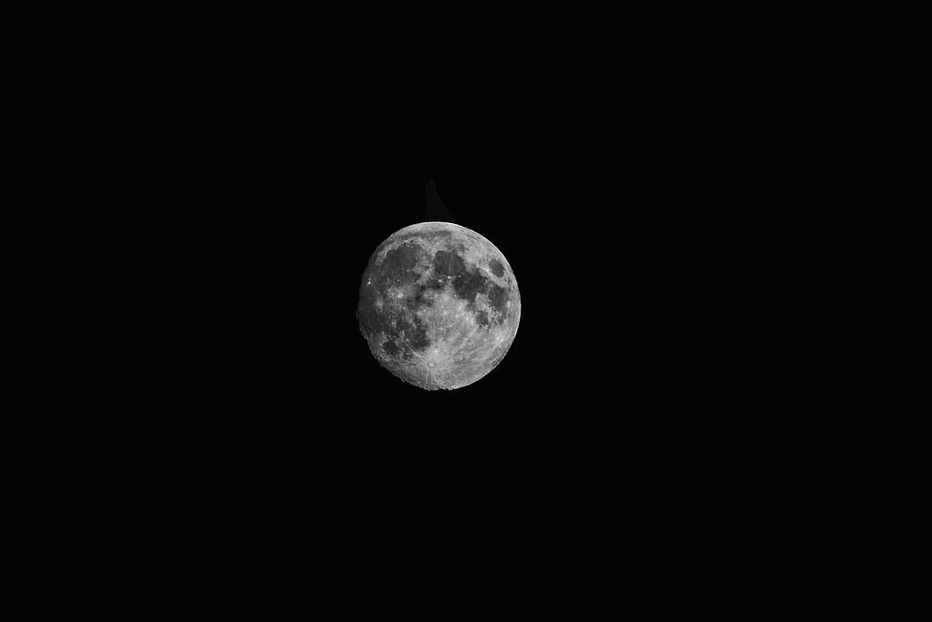 Keira moon