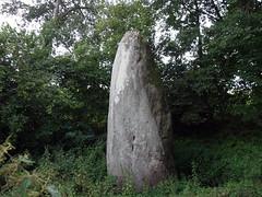 Le menhir de Bellouan près de Ménéac - Morbihan - Juillet 2018 - 05 - Photo of Illifaut