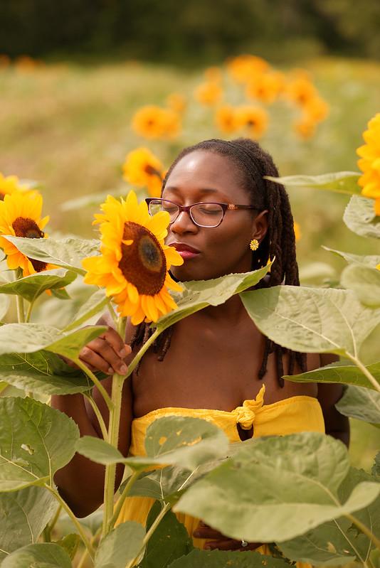 Misha in Summer Sunflowers