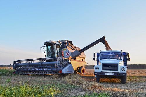 Vector 410 & GAZ 3309