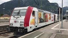 Zebra spielt Golf - Güterzugverkehr auf der Mittenwaldbahn
