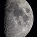 Moonshot by herbraab