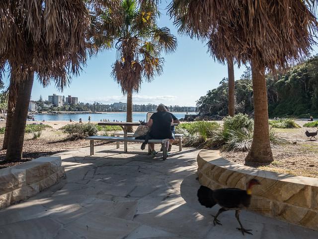 Manly Beach-26.jpg, Olympus E-M5MarkII, Lumix G X Vario 12-35mm F2.8 Asph. Power OIS