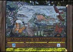 Mountains tp Mangroves Sandgate=