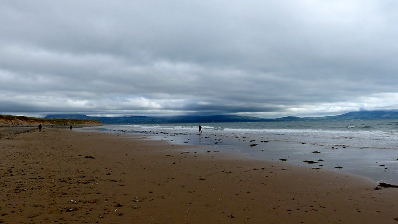 This is a picture of newborough forest beach, anglesey