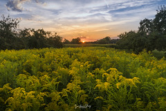Sunset Time - Photo of Sundhouse