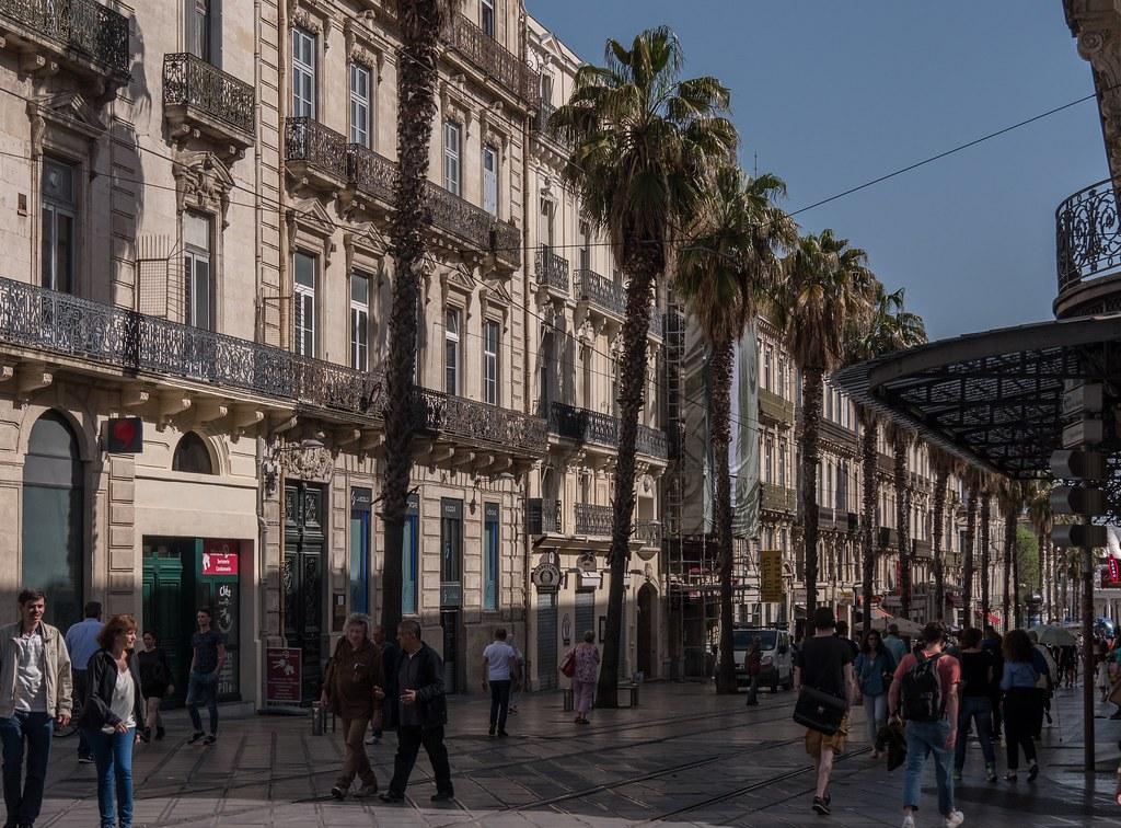 Montpellier : ville d'ombre et de lumière... 41616565152_0a2da8f6a1_b